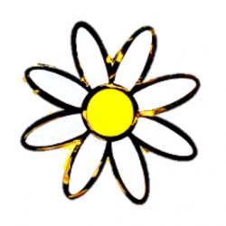 Insignia margarita